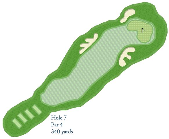 Golf Figure 11