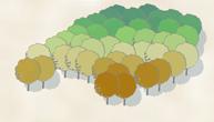 Final tree symbols