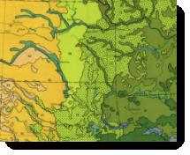 Vegetation Map - thumbnail