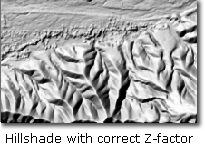 Z factor - Figure 1
