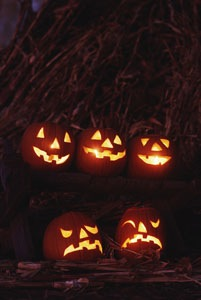 halloween picture - jack o' lanterns