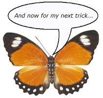 Mr. Butterfly says, 'And now for my next trick...'.